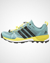 Adidas Performance TERREX BOOST GTX Tursko vapour steel/core black/ice green