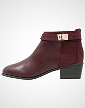 Miss Selfridge ALESSIA Ankelboots burgundy