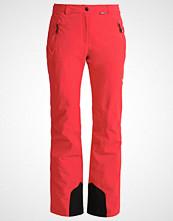 Icepeak NOELIA  Vanntette bukser coral red