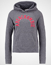 Abercrombie & Fitch CORE Hoodie grey
