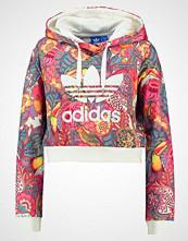 Adidas Originals Hoodie multicolor