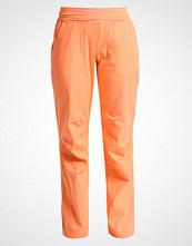 Adidas Performance TERREX FELSBLOCK Bukser orange