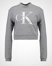 Calvin Klein SHRUNKEN TRUE ICON Genser grey