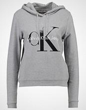 Calvin Klein HONOR TRUE ICON Hoodie grey