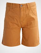 TWINTIP Shorts brown