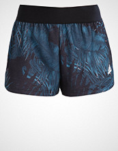 Adidas Performance Sports shorts black