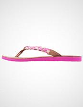 UGG Australia NAVIE Flip Flops furious fuchsia