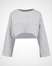 Native Youth WIDE SLEEVE CROP WITH RAW EDGE Genser grey