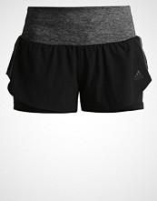 Adidas Performance ULTRA ENERGY  Sports shorts black/granite