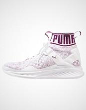 Puma IGNITE EVOKNIT Nøytrale løpesko white/vaporous gray/dark purple