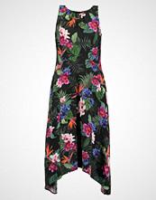 Wallis Petite PALM FLORAL HANKY  Fotsid kjole black