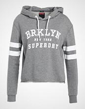 Superdry RIVERSIDE Hoodie grey marl