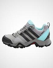 Adidas Performance TERREX AX2R GTX  Tursko stone grey/clear aqua