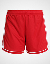 Adidas Performance SQUAD  Sports shorts power red/white