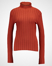 Weekday TURL POLONECK Jumper rusty orange