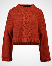 Native Youth SIENNA  Jumper rust
