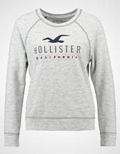 Hollister Co. TIMELESS Genser streaky grey