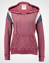 Hollister Co. SPORTY LOGO Hoodie burg