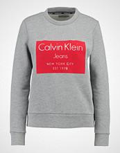 Calvin Klein HANSI Genser mid grey heather