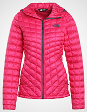 The North Face THERMOBALL HOODIE VAPOROUS Turjakke petticoat pink