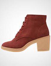 New Look CURFEW Ankelboots dark red