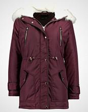 New Look WINE Parka dark burgundy