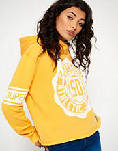 Superdry COLLEGE  Hoodie yellow