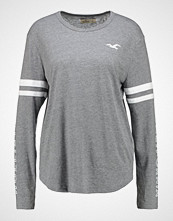 Hollister Co. PRINT CORE LOGO  Topper langermet med grey flat