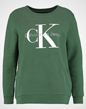 Calvin Klein CREW NECK TRUE ICON Genser trekking green