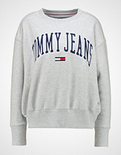 Tommy Jeans COLLEGIATE Genser ice grey heather