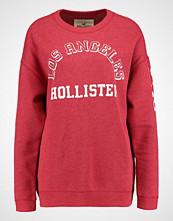 Hollister Co. LOGO CREW Genser red