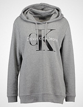 Calvin Klein HOWARA TRUE ICON HOODY  Hoodie light grey heather