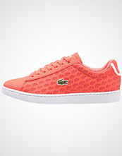Lacoste CARNABY EVO Joggesko pink/red