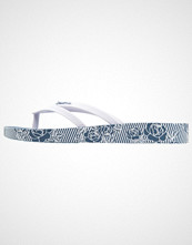 Ipanema BOSSA SOFT Badesko blue/white
