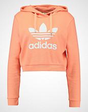 Adidas Originals TREFOIL HOODIE Hoodie chalk coral